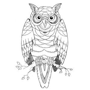Эскиз тату совы из линий