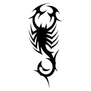 Эскиз тату на ногу со скорпионом