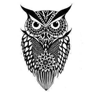 Эскиз тату классической совы