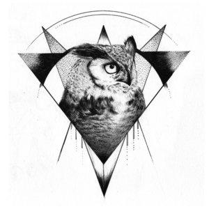 Эскиз совы с треугольниками