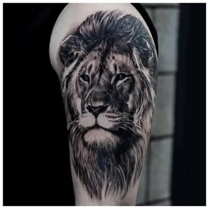 Тату льва на плече в ч/б