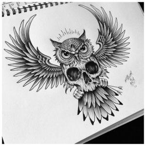 Эскиз совы в полете с черепом