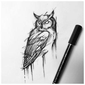 Эскиз крутой совы