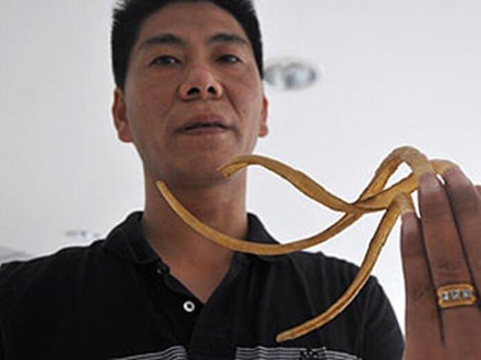 Житель Китая Вен Жан с длинными ногтями