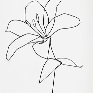Эскиз тату лилия
