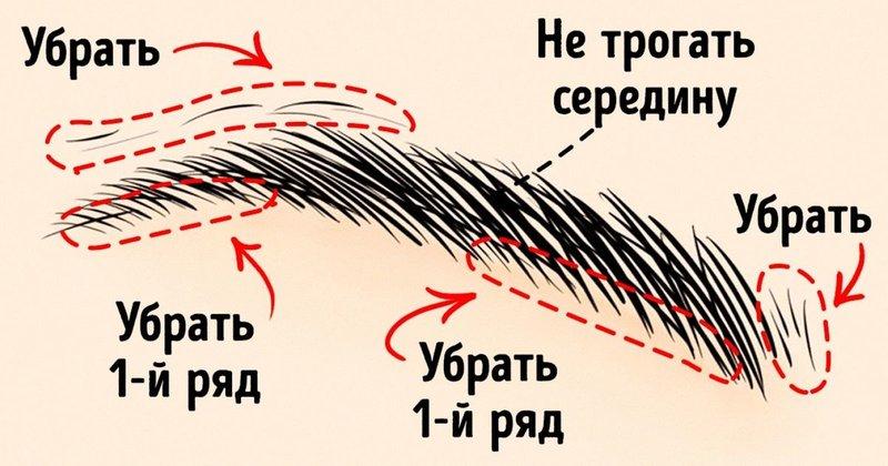 Как правильно выщипывать брови пинцетом