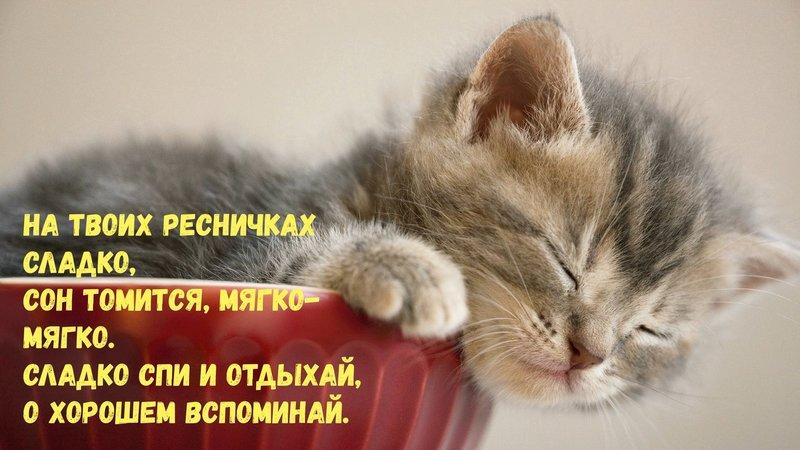 Спокойной ночи картинки с пожеланиями