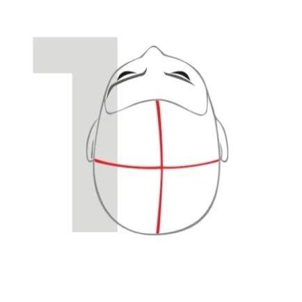 Схема деления головы перед окрашиванием