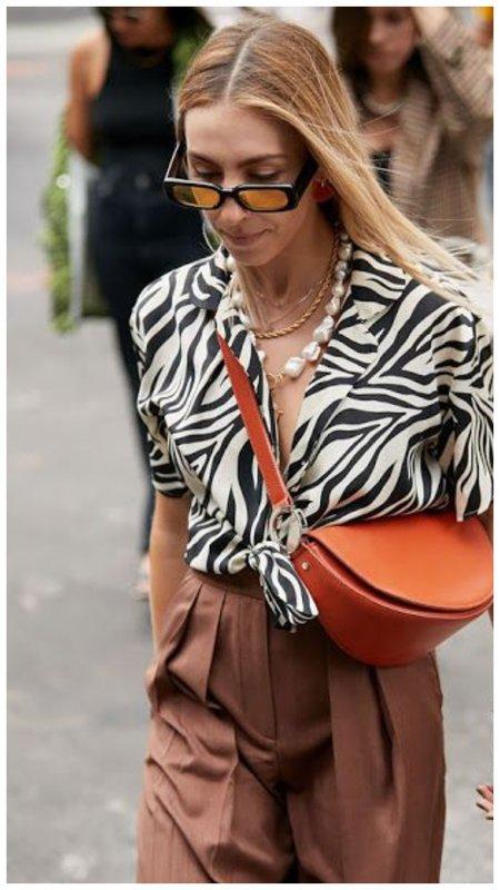 С чем носить блузку зебра