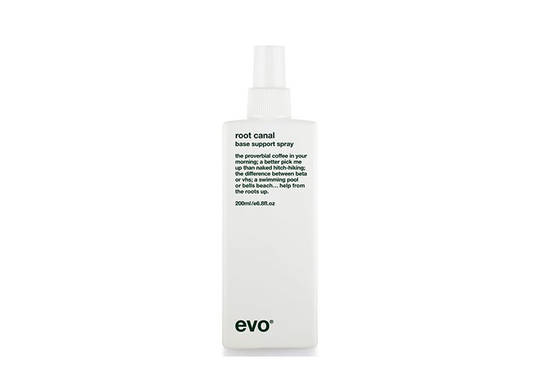 Root Canal Base Support Spray, EVO