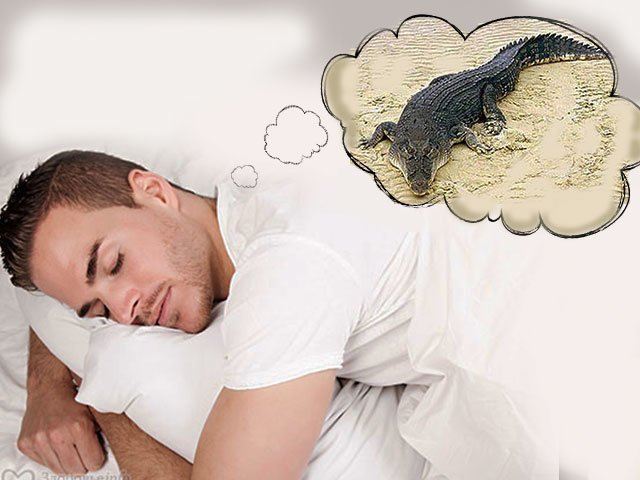 К чему снится пудра для лица
