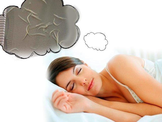 толкование сна с глистами