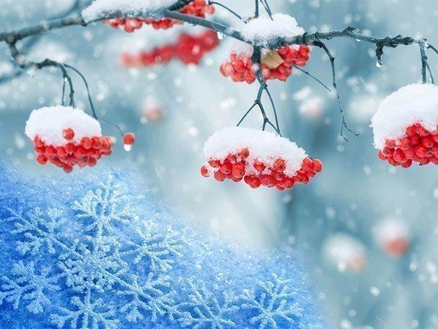 Снится к чему снег — много белого снега к чему снится