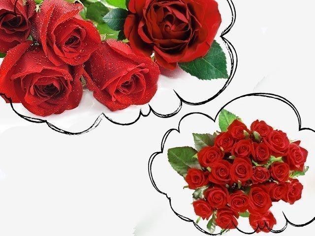 когда снятся розы к чему это