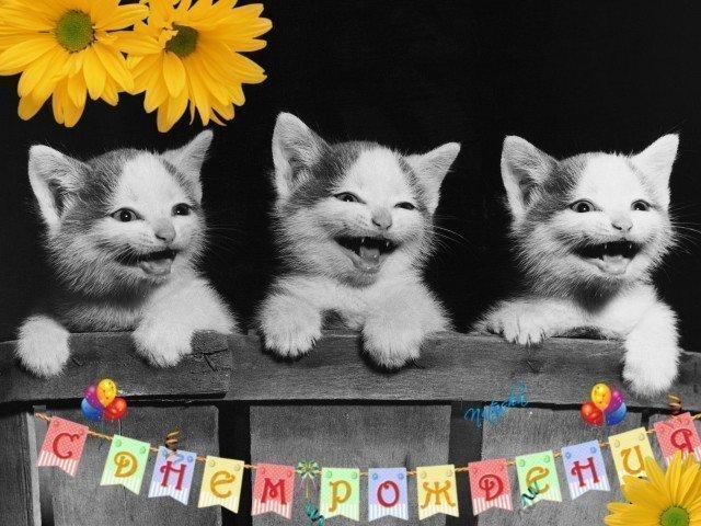 Как поздравить с днем рождения оригинально